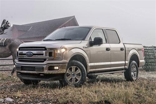 7. Ford F-150 XL (giá khởi điểm: 29.750 USD).