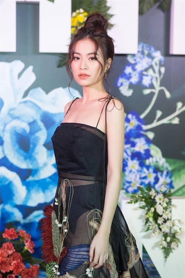 Năm 2007, người đẹp 30 tuổi gây chú ý khi đóng nữ chính Vàng Anh trong phần 2 chương trình truyền hình tương tác Nhật ký Vàng Anh.