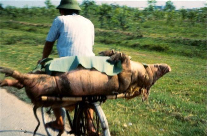 Anh cuc doc ve xe dap o Ha Noi nam 1990-Hinh-6