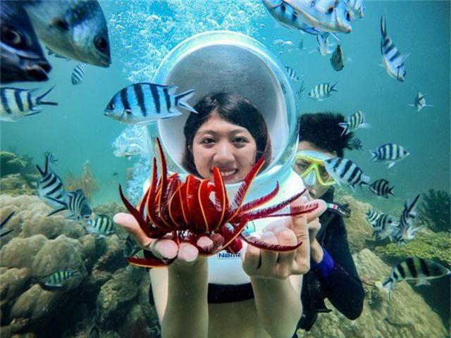 5 điểm ngắm san hô đẹp nhất Việt Nam, nhất định phải khám phá một lần trong đời - 2
