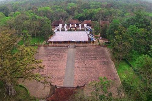 18 cây cổ thụ (300 - 600 tuổi) ở khu tích quốc gia đặc biệt Lam Kinh (Thanh Hóa) được Hội Bảo vệ thiên nhiên và Môi trường Việt Nam công nhận là cây di sản Việt Nam.