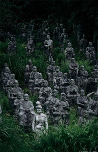 """Canh tuong giat minh o """"rung tuong ma"""" khet tieng Nhat Ban-Hinh-2"""