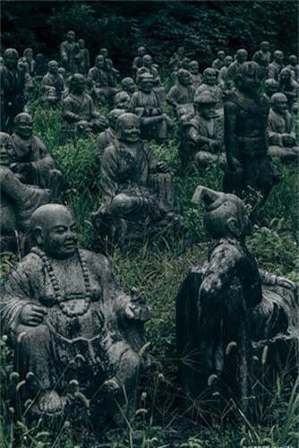 """Canh tuong giat minh o """"rung tuong ma"""" khet tieng Nhat Ban-Hinh-6"""