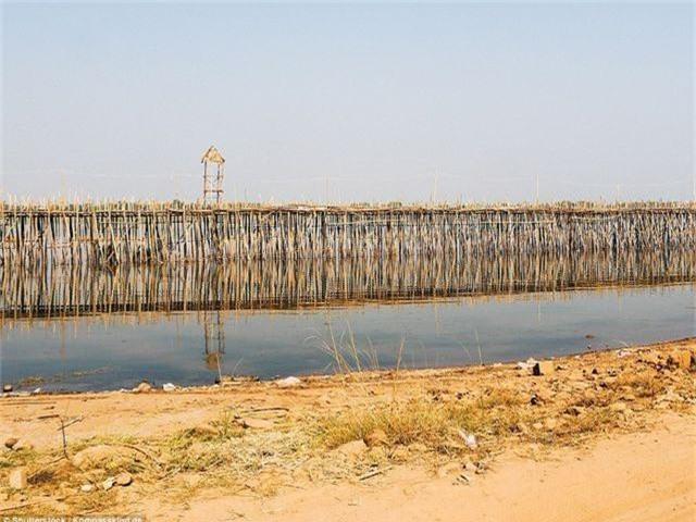 Cây cầu được làm mới hàng năm khi mùa nước lũ qua đi, mùa khô về