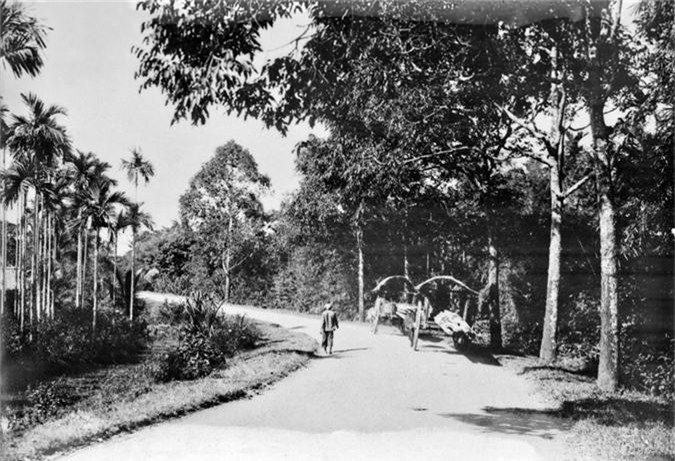 Hinh doc ve giao thong tren Quoc lo 1 thap nien 1920-Hinh-2