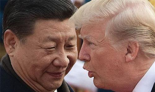 Tập Cận Bình và Donald Trump. Nhiếp ảnh gia: Nicolas Asfouri