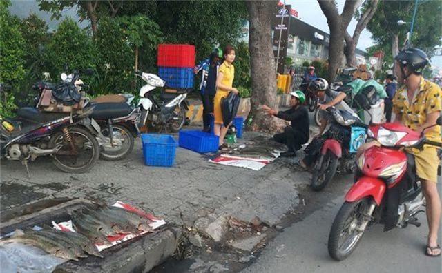 """Dân TPHCM """"đổ xô"""" mua cá tầm 100.000 đồng/kg ủng hộ người nuôi cá vùng lũ - 4"""