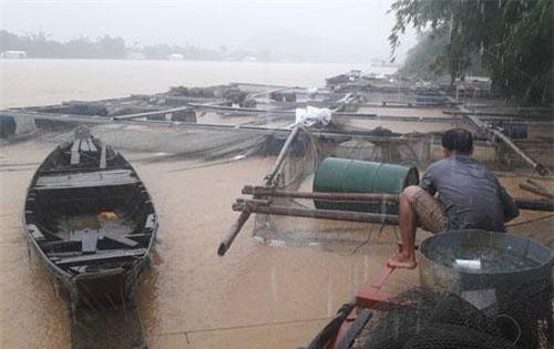 Lũ lụt do sự cố và xả lũ thủy điện gây thiệt hại nặng nề cho người dân tỉnh Đồng Nai