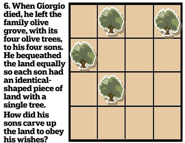 6. Trước khi ông Giorgio qua đời có để lại cho 4 con trai 4 cây ô liu đã được ông trồng vào những vị trí để chia mảnh đất hình vuông thành 4 khoảnh đất bằng nhau. Bạn hãy chia giúp ông thành 4 khoảnh đất bằng nhau trong đó có 1 cây ô liu cho 4 con trai ông.