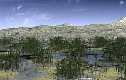 Hình ảnh khu rừng hoá thạch được mô phỏng lại.