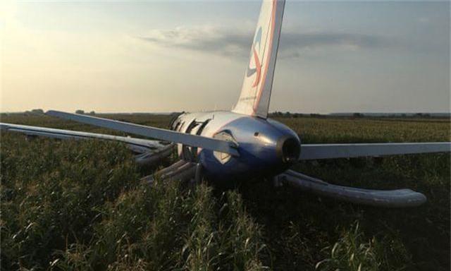 Đâm phải đàn chim, máy bay Nga chở 233 người lê bụng xuống ruộng ngô - 2