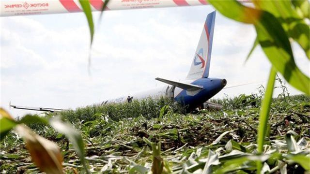 Đâm phải đàn chim, máy bay Nga chở 233 người lê bụng xuống ruộng ngô - 4
