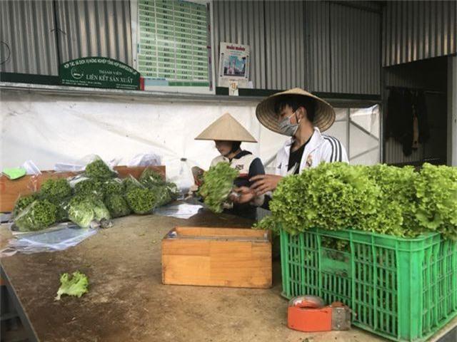 Sau mưa lũ, các loại rau xanh Đà Lạt đồng loạt tăng giá - 2