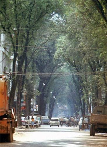 Sai Gon nam 1967-1968 qua ong kinh Peter Stevens-Hinh-4