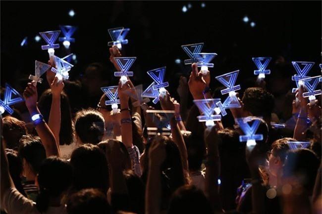 Chẳng thua kém gì các idol Hàn Quốc, ca sĩ Việt cũng sở hữu những lightstick độc đáo khiến FC phổng mũi tự hào - Ảnh 11.