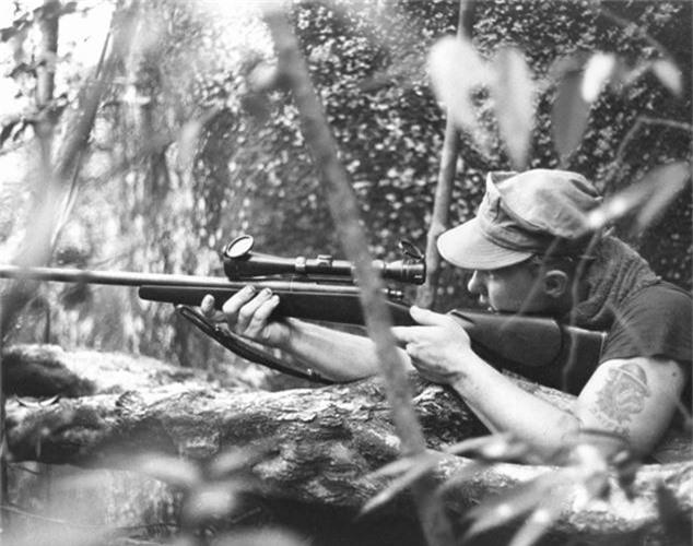 Su that ve chien tranh Viet Nam qua cai nhin nguoi My-Hinh-12