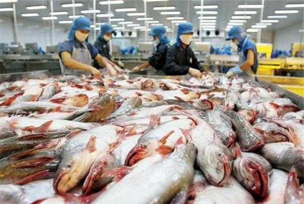 EVFTA đối với nông sản Việt Nam không chỉ đơn thuần là cơ hội mà còn dẫn đến thách thức, không hề nhỏ.