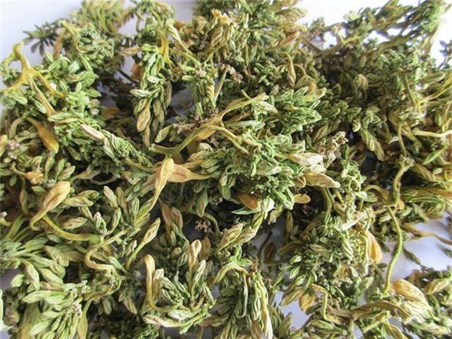 Loại hoa thường cắt bỏ đi sấy khô thành đặc sản 1,5 triệu/kg - Ảnh 2.