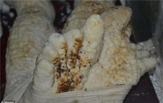 Sự thật về xác người ngoài hành tinh bị cháy xém ở Trung Quốc 3