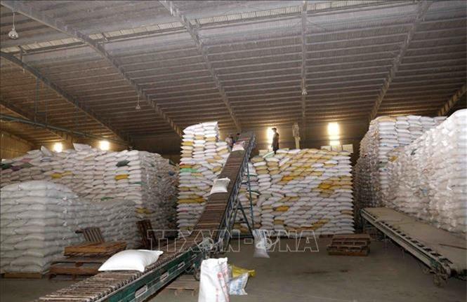 Kho gạo xuất khẩu của Tổng công ty Lương thực miền Nam. Ảnh: Vũ Sinh/TTXVN