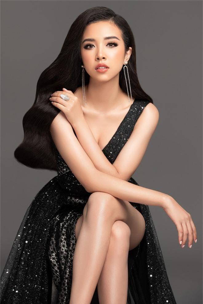 Sau 1 năm rèn giũa, Á hậu Thúy An chính thức xác nhận đại diện Việt Nam dự thi Miss Intercontinental 2019 - Ảnh 3.