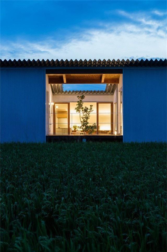 Nhà cấp 4 thiết kế cực tinh tế được xây giữa đồng lúa xanh, khung cảnh vừa đẹp vừa nên thơ - Ảnh 2.