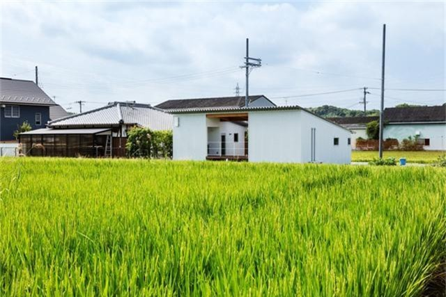 Nhà cấp 4 thiết kế cực tinh tế được xây giữa đồng lúa xanh, khung cảnh vừa đẹp vừa nên thơ - Ảnh 6.