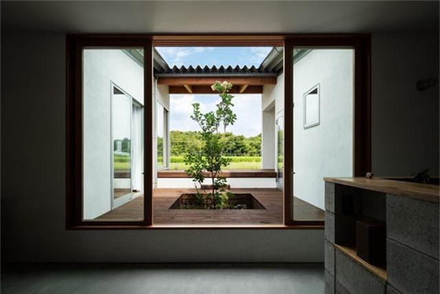 Nhà cấp 4 thiết kế cực tinh tế được xây giữa đồng lúa xanh, khung cảnh vừa đẹp vừa nên thơ - Ảnh 9.