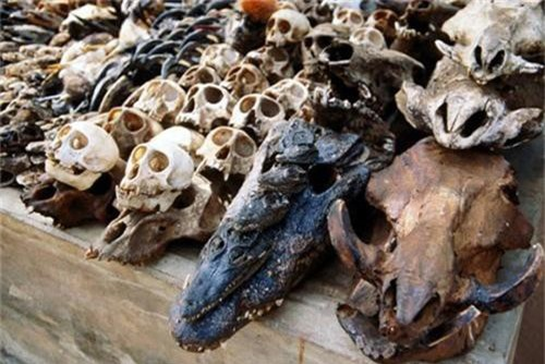 Những bí ẩn bên trong khu chợ bùa ngải lớn nhất thế giới - anh 13