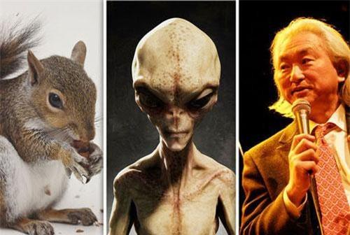 """Tiến sĩ Kaku cho rằng trong mắt người ngoài hành tinh, con người chẳng khác gì những """"con sóc""""."""