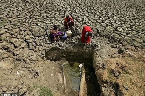 Nắng nóng và khô hạn đến mức báo động ở Ấn Độ.