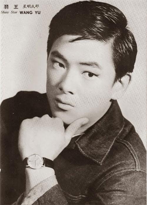 Vương Vũ được mệnh danh là vua võ thuật thế hệ đầu làng phim Hong Kong. Gần 50 năm hoạt động, ông được nhiều thế hệ diễn viên tôn kính nhờ danh tiếng có được trong vai trò diễn viên  đạo diễn, biên kịch và cả giám chế cho hơn 80 bộ phim.