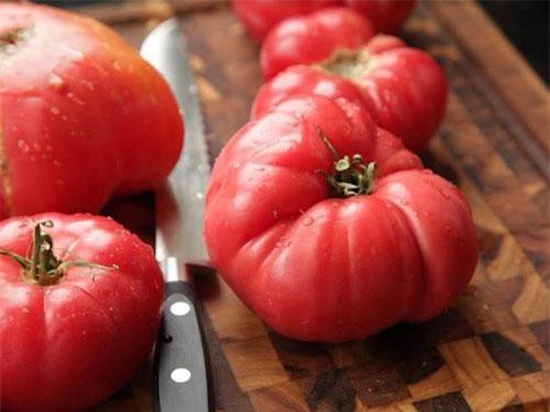 Nghiên cứu cho biết, nhiệt độ thấp trong tủ lạnh có thể phá hủy màng tế bào cà chua, khiến cà chua dễ bị khô héo và hỏng. Hơn nữa, cà chua bảo quản trong tủ lạnh sẽ khó nấu hơn, từng miếng cà chua có thể sẽ còn nguyên trong miệng khi ăn. Vì vậy, bạn có thể bảo quản cà chua ở nhiệt độ phòng, tại nơi khô ráo và tránh ánh nắng trực tiếp nhé.