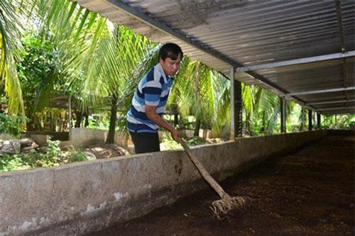 Anh Vinh từ bỏ công việc mức lương hàng chục triệu đồng ở TP.HCM để về quê khởi nghiệp nuôi trùn quế.