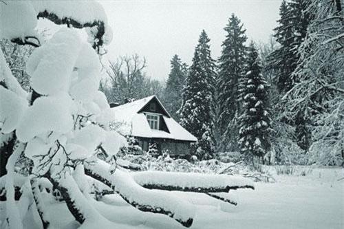 Ngôi nhà giữa khu rừng Białowieża ở Ba Lan, nơi nữ khoa học gia Simona Kossak sinh sống trong 30 năm để nghiên cứu về đời sống các loài động vật. Ảnh: Jan Walencik.