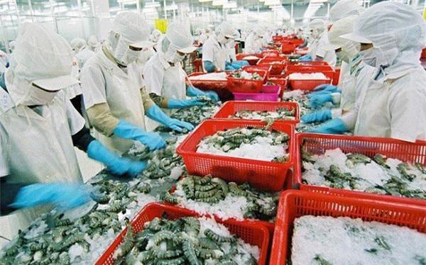 Trong số các FTA,EVFTA có tác động mạnh nhất đối với ngành tôm Việt.