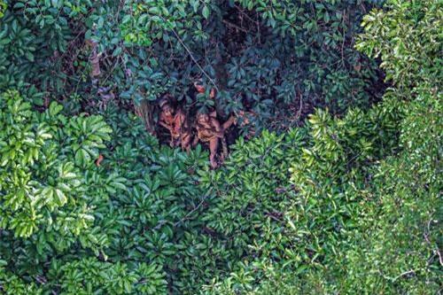 Bộ lạc ở Amazon. (Ảnh: I.T)
