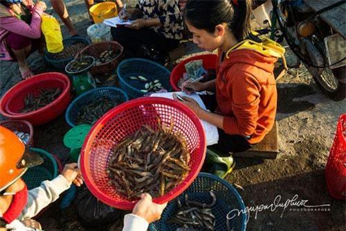 Đôi khi có những ngày kém may mắn họ chỉ đánh bắt được rất ít tôm, cá. Những ngư dân ở Vân Quật Đông vẫn gắn bó với ngề sau nhiều năm, Họ đánh bắt cá ven bờ và chỉ ra tới cửa biển