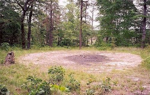 """Nằm trong khu rừng ở ngoại ô thành phố Siler, tiểu bang Bắc Carolina, Mỹ, """" vòng tròn của Quỷ"""" (Devil's Tramping Ground) là địa điểm xảy ra những hiện tượng bí ẩn mãi chưa tìm ra lời giải."""