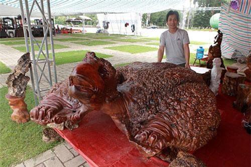 Anh Bảo Phúc (Hòa Bình), chủ nhân của tác phẩm cho biết, toàn bộ tượng cụ rùa được làm từ gỗ nu đinh hương hàng trăm năm tuổi
