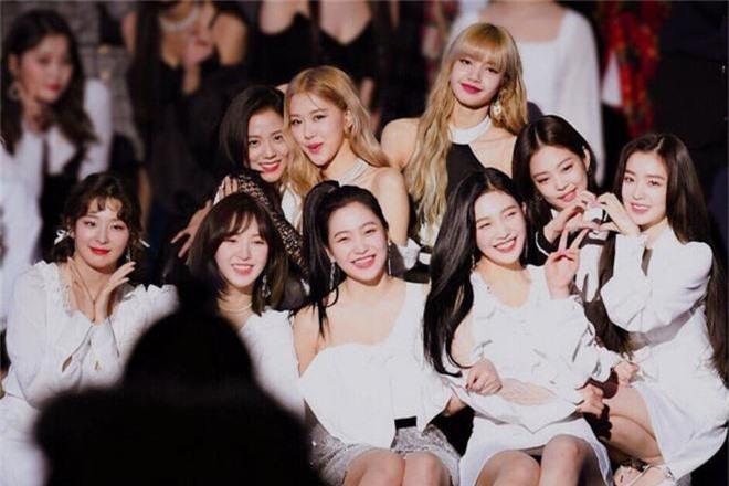 Chỉ vừa mới bình luận dạo khen nhau xinh, Jisoo (BLACKPINK) và Seulgi (Red Velvet) đã làm fan phát cuồng đòi collab gấp - Ảnh 5.