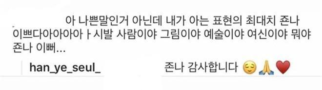 Rần rần màn khen idol gắt nhất Kbiz: Fan khen bằng ngôn từ tục tĩu, mỹ nhân Han Ye Seul đáp trả còn bá đạo hơn - Ảnh 3.