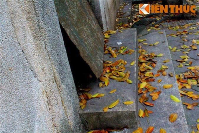 Ron nguoi ngoi nha lanh leo, hoang vang giua pho vang Ha Noi-Hinh-11