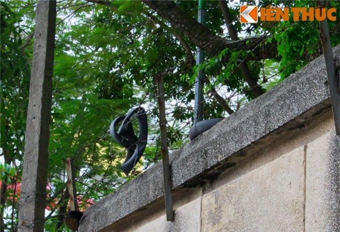 Ron nguoi ngoi nha lanh leo, hoang vang giua pho vang Ha Noi-Hinh-14