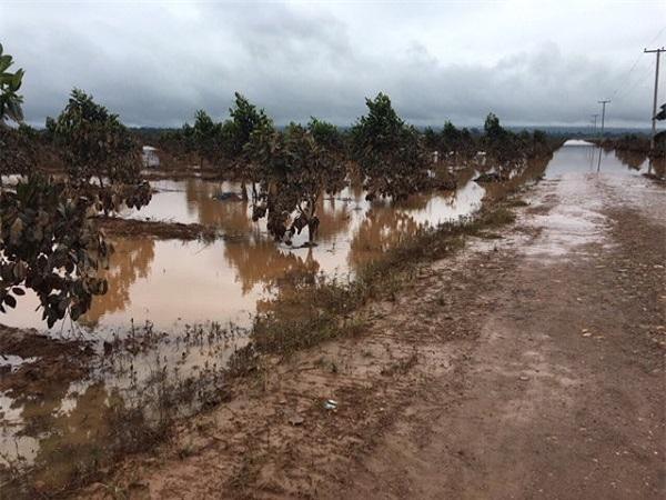 Một số hình ảnh ngập lụt tại Attapeu, Lào (Ảnh: HAGL)