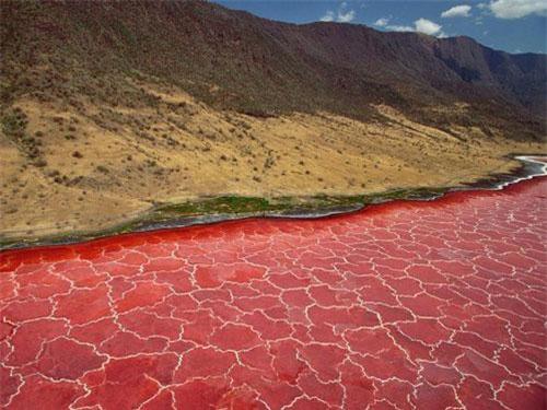 Tanzania thuộc Đông Phi là quốc gia sở hữu nhiều kỳ quan thiên nhiên. Trong đó, hồ Natron là vùng đất ẩn chứa nhiều bí ẩn nổi tiếng thế giới. Nằm sát biên giới Kenya, hồ có vị trí cao hơn 600 m so với mực nước biển và được nuôi dưỡng bởi những dòng suối giàu khoáng chất. Do đó, độ kiềm ở đây cao. Ảnh: Cntraveler.
