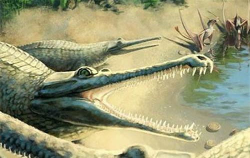 Loài cá sấu biển cổ đại có hàm răng đáng sợ.
