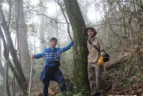 Tác giả và ông Trần Ngọc Lâm bên cây chè ở gần đỉnh Fansipan.