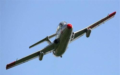 Máy bay huấn luyện L-29 Delfin. Ảnh: Wikipedia.