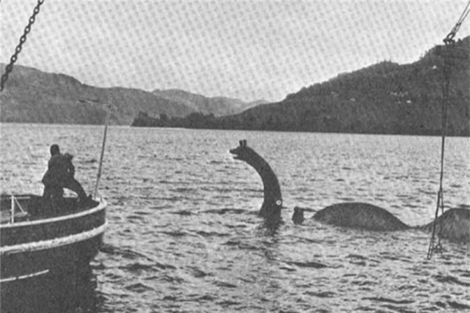 """Vi sao con nguoi """"dien cuong"""" san lung quai vat ho Loch Ness?-Hinh-3"""
